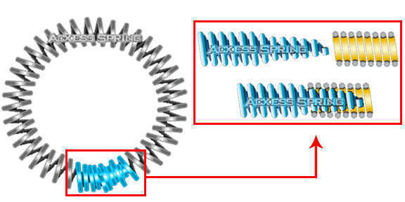 diagram with garter spring tapered ends example